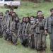 """الداخلية التركية تعلن """"تحييد"""" 42 عنصراً بينهم قادة من حزب العمال الكردستاني خلال أسبوع"""