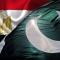 باكستان تطلب نقل تجربة «100 مليون صحة» للقضاء على فيروس سي